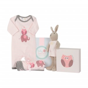 _0011_The Chick for girls Baby Hampers Baby Hampers 0011 The Chick for girls