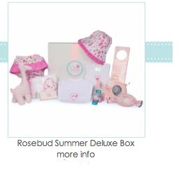 Rosebud Summer Baby Gift Basket